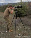 Ornithology and photography (Ornithologie)